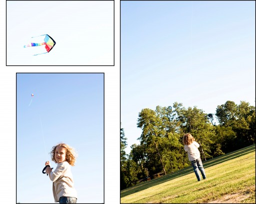 kite5 512x409 Family Night   Kite Flying