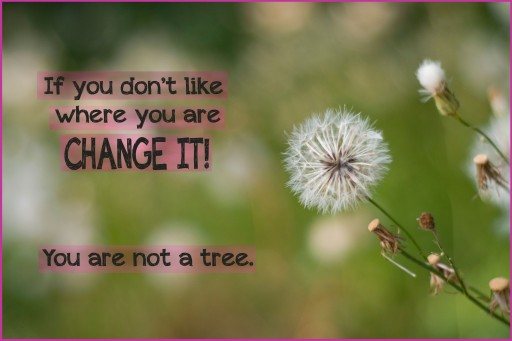 you are not a tree 512x341 Quote: If you dont like where you are...