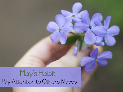 others 512x384 A Year of Intentional Habits