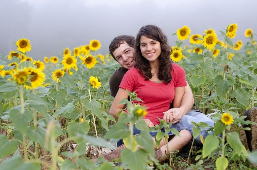 DSC 4514 512x339 Engagement Photos :: Sunflower Field & Cabin in the Woods