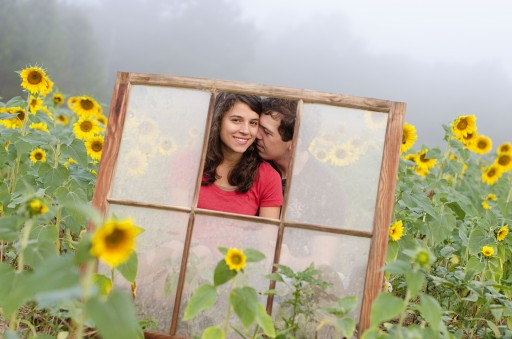 DSC 4520 512x339 Engagement Photos :: Sunflower Field & Cabin in the Woods