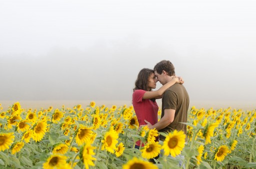 DSC 4548 512x339 Engagement Photos :: Sunflower Field & Cabin in the Woods
