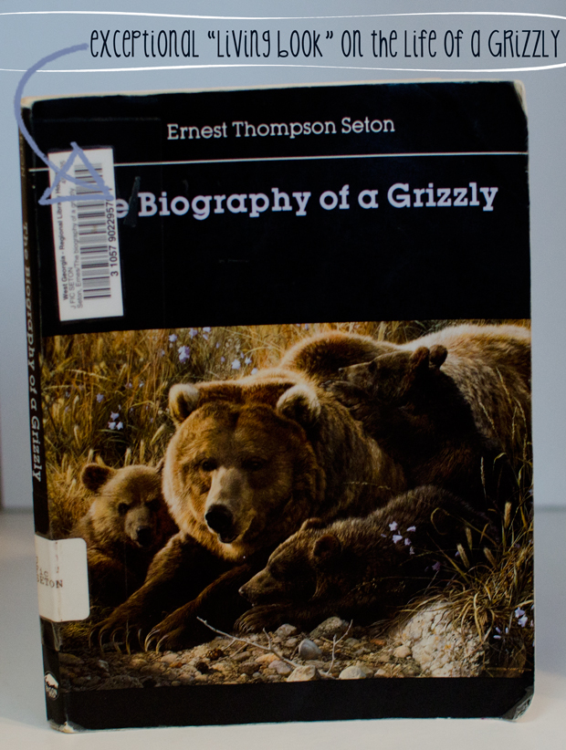 biography-of-a-grizzly-bear-10