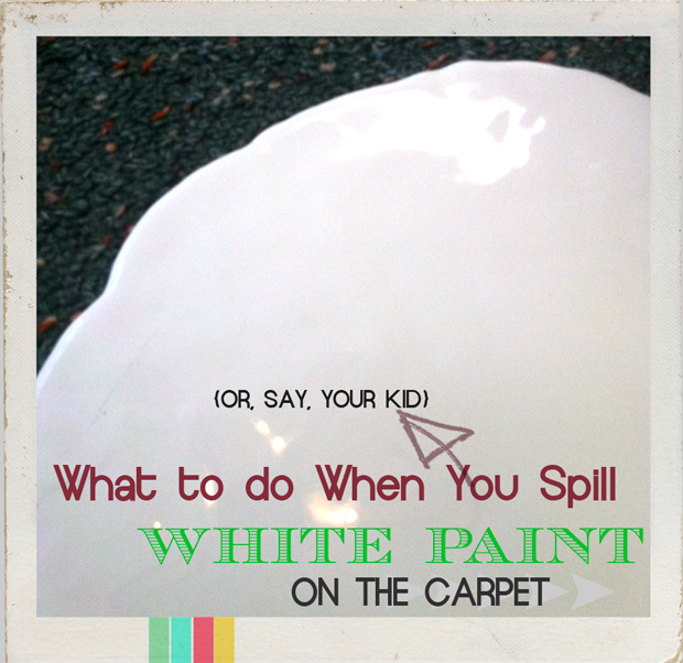 paint-spilled-on-carpet
