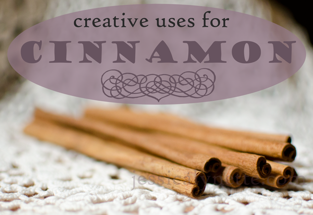 ways to use cinnamon sticks