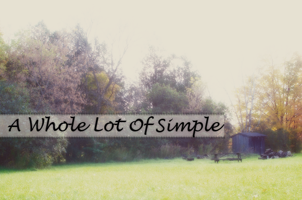 a-whole-lot-of-simple
