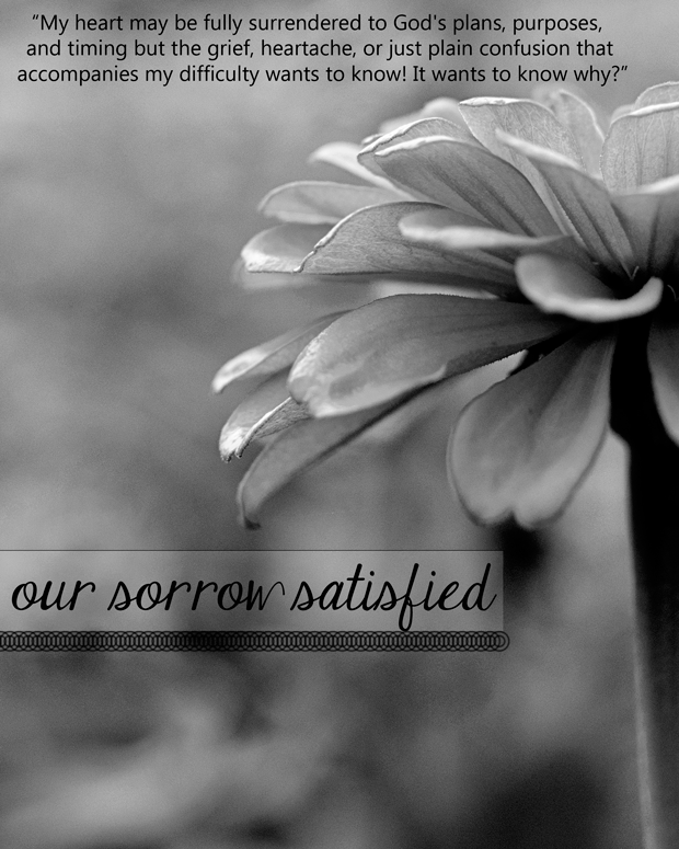 our sorrow satisfied 31 days of encouragement Our Sorrow Satisfied