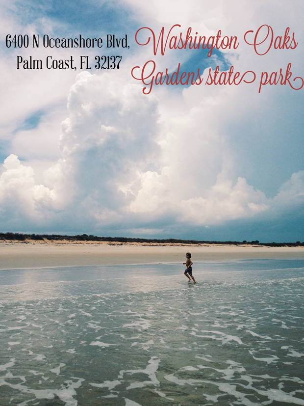 Fantastic Family Friendly Things to do around :: St Augustine