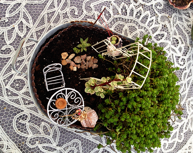 Create a whimsical fairy garden in a container garden using a beautiful, green spiral-like ground cover - Sedum 'John Creech'. Miniature fairy garden furnishings from Hobby Lobby.