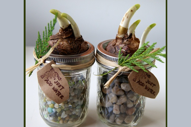 simple and sweet homemade gift ideas