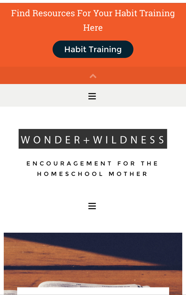 Wonder & Wildness - a new blog to encourage homeschoolers